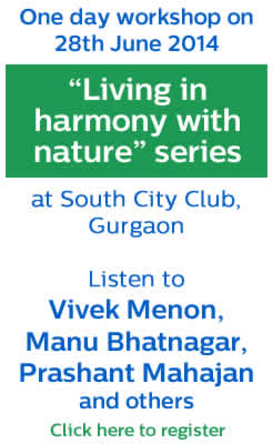 Workshop on living in harmony with nature