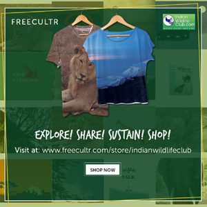 Buy Indian Wildlife Club Tees